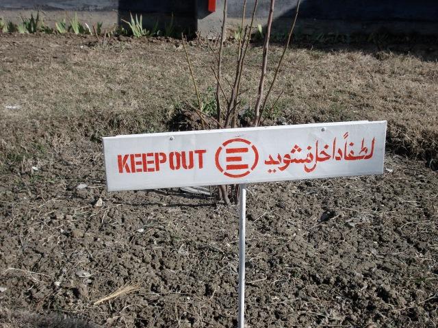Emergency in Afghanistan np©2007