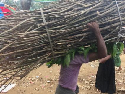 Bimbo rohingya porta legna nella sua baracca